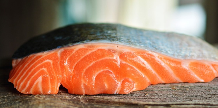 salmon katako sushi bar
